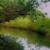"Санди мурти – ""Тора"" – документален филм"