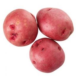 Картофена любов